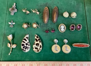 Fashion Earring and Pin Assortment