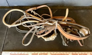 Lead Rope, Hackamore and Assorted Tack