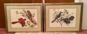 2 Framed and Matted Wildlife Art Prints - F. Massa